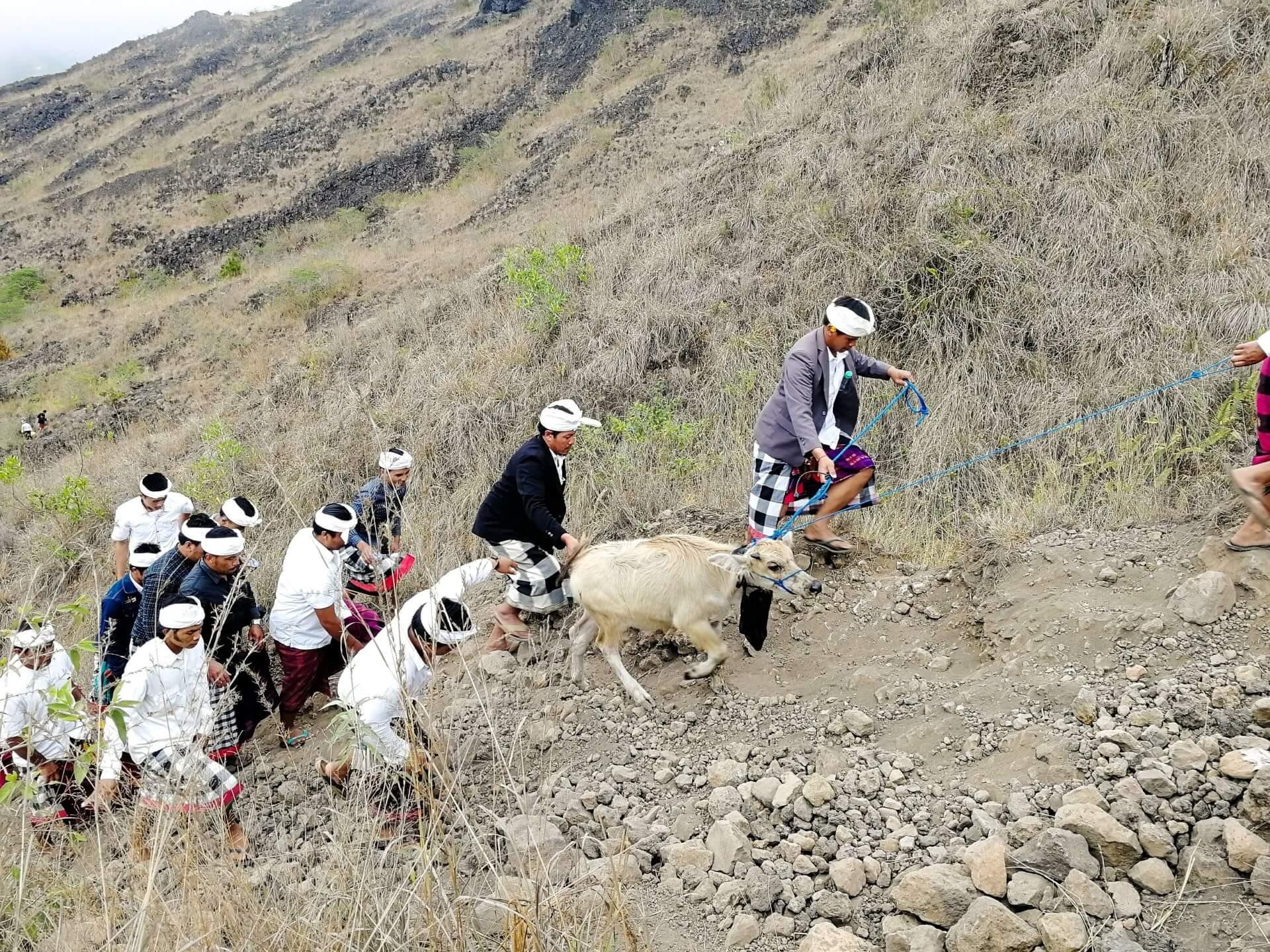 Ritual Procession